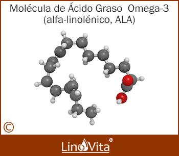 omega 3 madre alfa-linolénico ALA