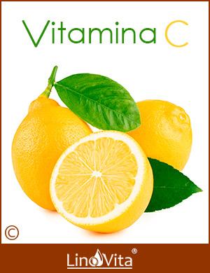 Vitamina c escorbuto y dieta Budwig