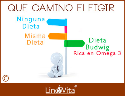 Que camino elegir dieta Budwig rica en omega 3 o misa dieta