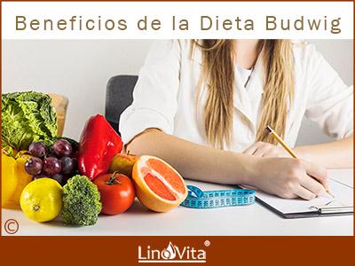 Dieta Budwig rica en omega 3 ALA de aceite de lino linaza