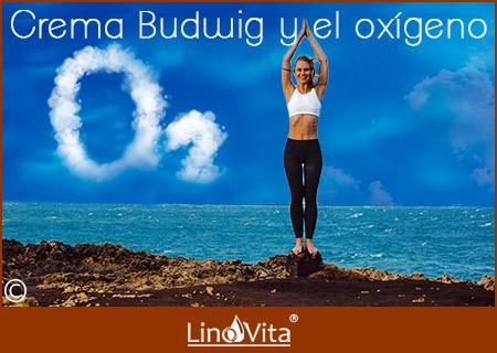 Crema Budwig protocolo Budwig y el oxigeno