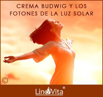 crema Budwig rica en omega 3 y los fotones de la luz solar