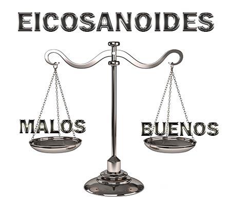4-equilibrio-entre-eicosanoides-buenos-y-malos.jpg