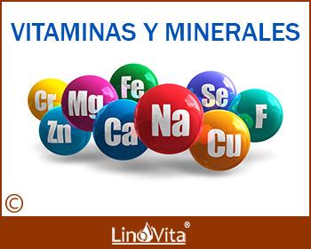 vitaminas, minerales y omega 3