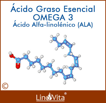 acido graso esencial omega 3 ALA