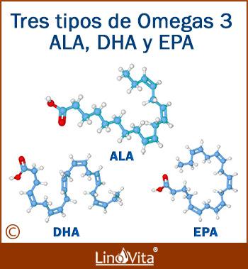 Tres tipos de omega 3 ALA, EPA, DHA