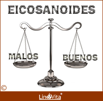 equilibrio entre eicosanoides buenos - omega 3 y malos - omega 6