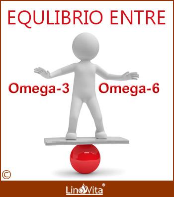 Importancia de equilibrio omega 3 y omega 6
