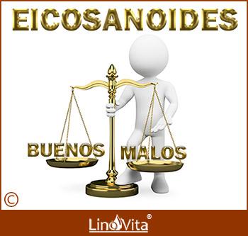 equilibrio entre eicosanoides buenos y malos omega 3 y omega 6