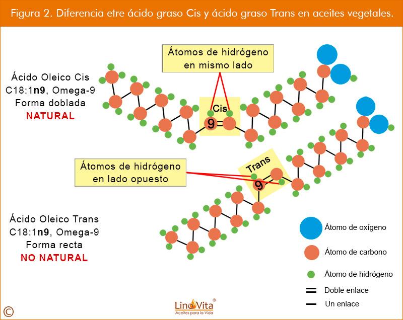 Figura 2 web Diferencia etre acido graso Cis y acido graso Trans en aceites vegetales omega 3 linovita