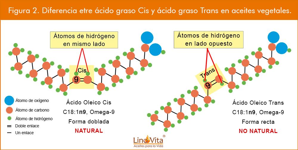 Figura-2a-web-Diferencia-etre-acido-graso-Cis-y-acido-graso-Trans-en-aceites-vegetales-omega-3